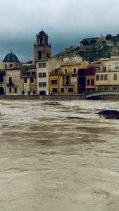 Dana Alicante